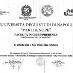 Corso di alta formazione: la cooperazione sociale